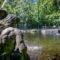 De tuinen van Het Hof van Katwijk – 300 jaar tuinhistorie in reuzenstappen